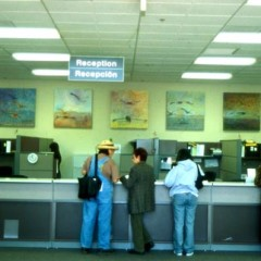 Installation view of Yolo Health and Social Services lobby, 2001.